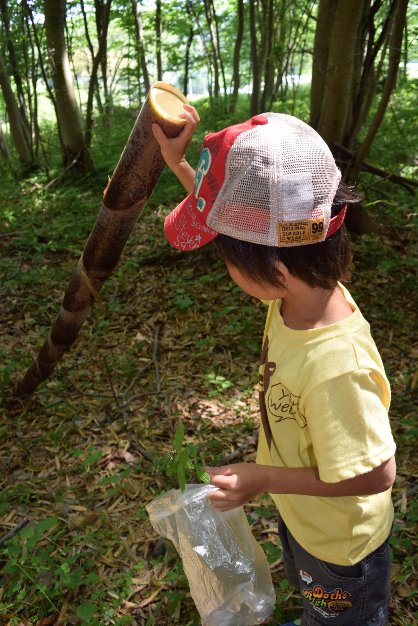 竹で半日遊び倒す「森のようちえん」