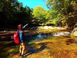 紅葉限定 シャワーウォーク 日光でプライベートな紅葉狩り